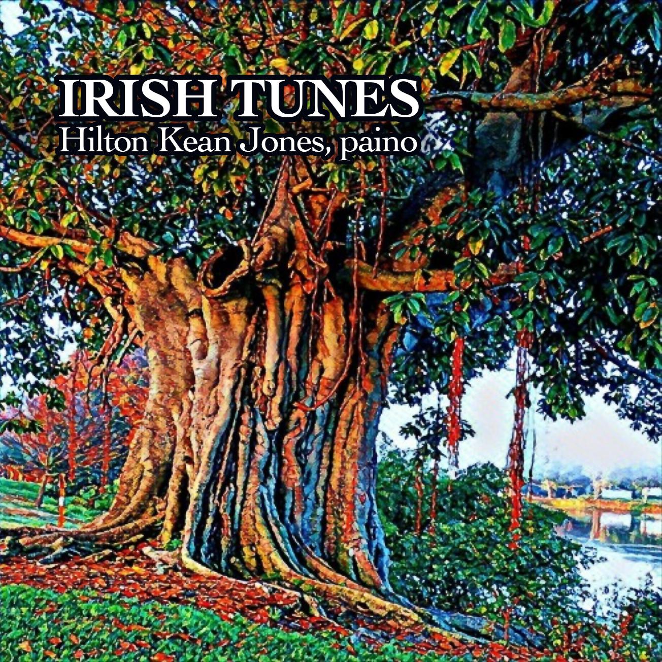 revised IRISH TUNES cover
