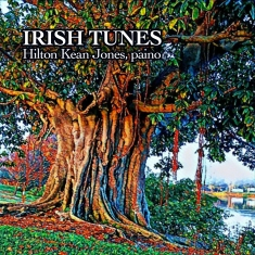 revised IRISH TUNES cover